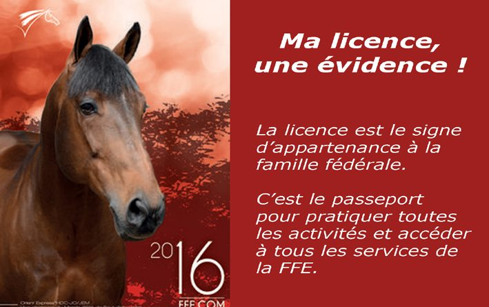 ma-licence-une-evidence-03