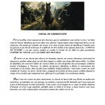 la-chronique-de-chey-26-copy