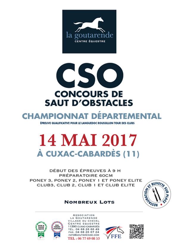 CSO 2017 copy2