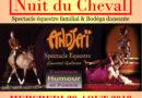 «LA NUIT DU CHEVAL» dans les arènes de Carcassonne